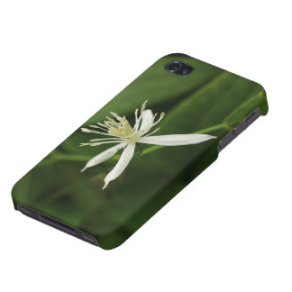 Virgin's Bower iPhone 4 Cover