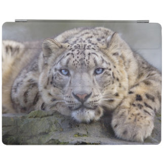 Vishnu Snow Leopard iPad Cover (all models)