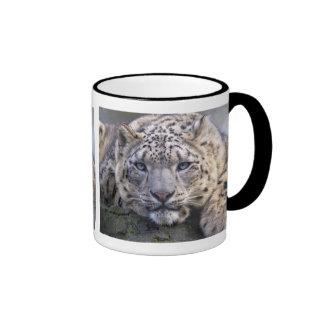 Vishnu Snow Leopard Mug