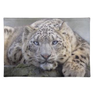 Vishnu Snow Leopard Placemat