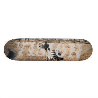 Vision 1030 skateboards