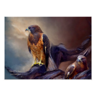 Vision Of The Hawk 2 Art Poster/Print Poster