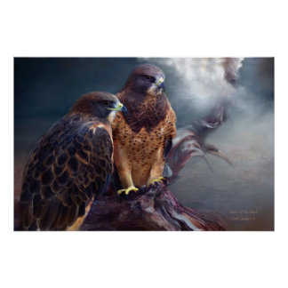 Vision Of The Hawk Art Poster/Print Poster
