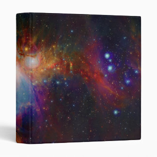 VISTA's infrared view of the Orion Nebula Binder