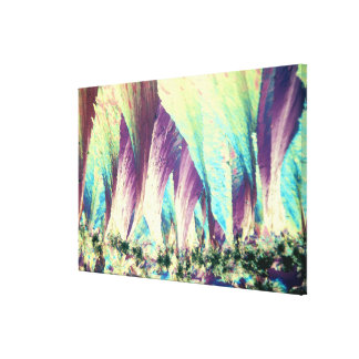 Vitamin A Crystals Stretched Canvas Print