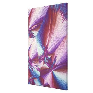Vitamin C or ascorbic acid crystals Canvas Print