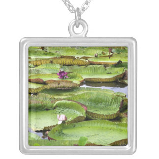 Vitoria Regis, giant water lilies in the Amazon Silver Plated Necklace