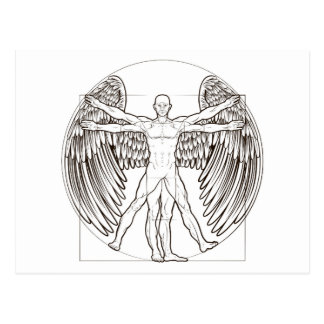 Vitruvian Man Angel Postcard
