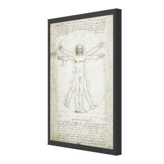 Vitruvian Man by Leonardo da Vinci Stretched Canvas Prints