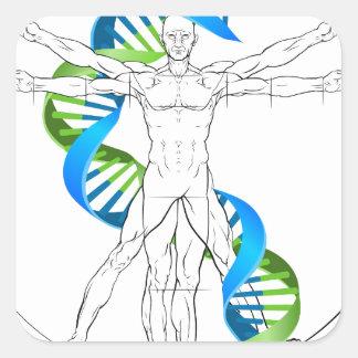Vitruvian Man DNA Square Sticker