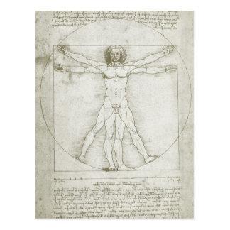 Vitruvian Man Leonardo da Vinci, Renaissance Art Postcard