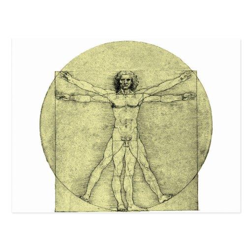 Vitruvian Man Post Cards