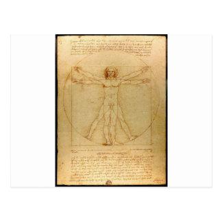 Vitruvian man. postcard