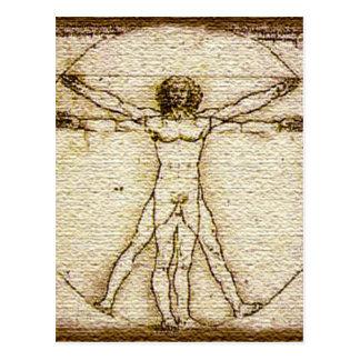 vitruvian man vector image digital design burlap postcard