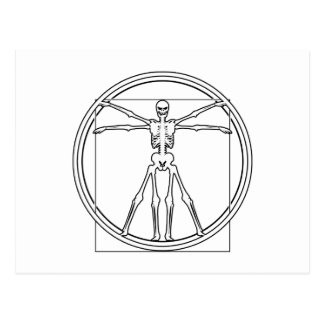 Vitruvian Skeleton Postcard