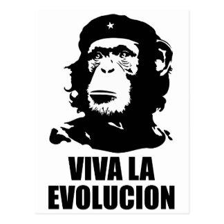 Viva la Evolucion Postcard