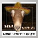 VIVA LAMANCHA, LONG LIVE THE GOAT!