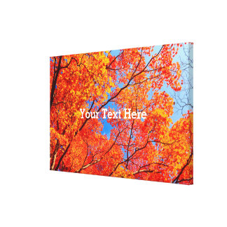 Vivid Autumn Orange Maple Leaves Fall Blue Sky Stretched Canvas Print