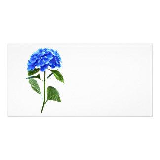 Vivid Blue Hydrangea Customized Photo Card