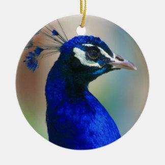 vivid blue peacock round ceramic decoration