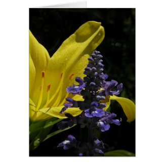 Vivid Daylily & Salvia Floral Note Card
