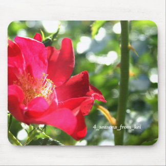 Vivid deep-red rose* Version 2☆ Mouse Pad
