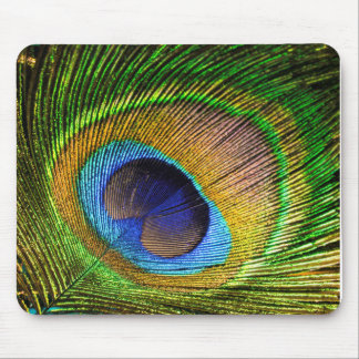 Vivid Feather Mouse Pad