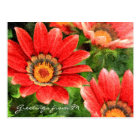 Vivid Orange African Daisy Digital Oil Painting Postcard