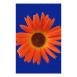 Vivid Orange and Yellow Gerbera Daisy in Abstract Personalized Stationery