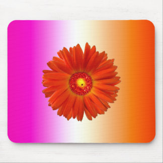 Vivid Orange Gerbera Daisy on Pink Orange Mouse Mat