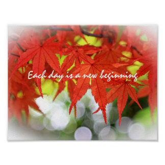 Vivid Red Autumn Maple Leaves White Bokeh Fall Print