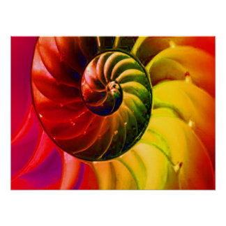 Vivid Seashell Swirly In Techno Color Poster