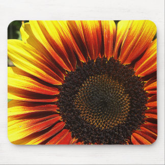 Vivid Sunflower Closeup Mouse Mat