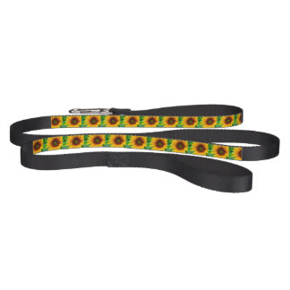 Vivid Sunflower Pet Leash