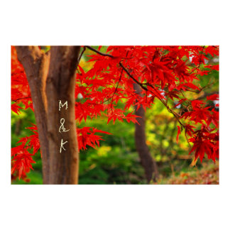 Vivid Vermillion Maple Leaves Autumn Red Fall Bark Poster