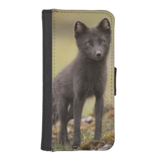 Vixen searches for food iPhone SE/5/5s wallet case