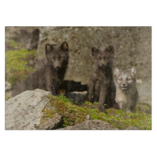 Vixen with kits outside their den cutting board