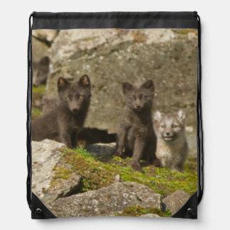 Vixen with kits outside their den drawstring bag