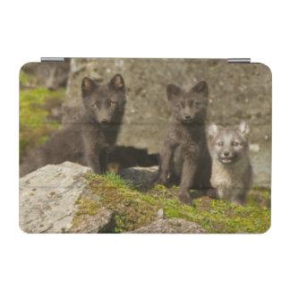 Vixen with kits outside their den iPad mini cover