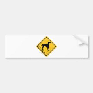 Vizsla Bumper Sticker