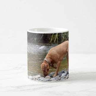 Vizsla by River Coffee Mug