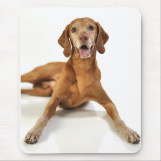 Vizsla Cards & Gifts Mouse Pad