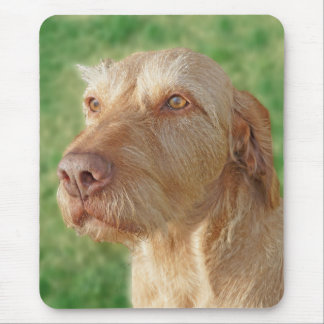 Vizsla Create Your Own Custom Pet Photo Mousepad