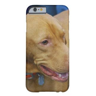 Vizsla Dog Barely There iPhone 6 Case