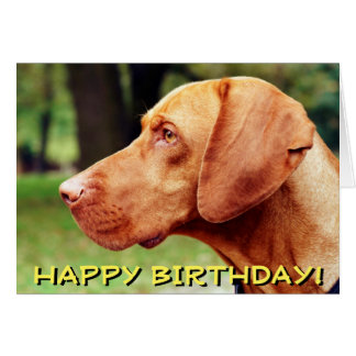 Vizsla dog birthday card