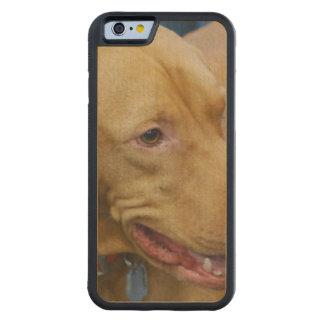 Vizsla Dog Maple iPhone 6 Bumper Case