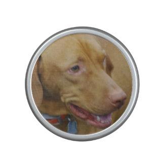 Vizsla Dog Speaker