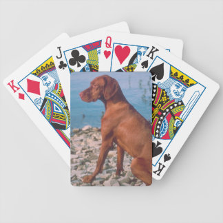 Vizsla Dog Playing Cards