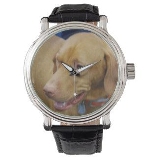 Vizsla Dog Watches