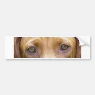 vizsla eyes.png bumper sticker